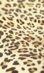Applikationsmtrl. Leopard